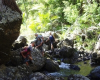 anawhata-stream