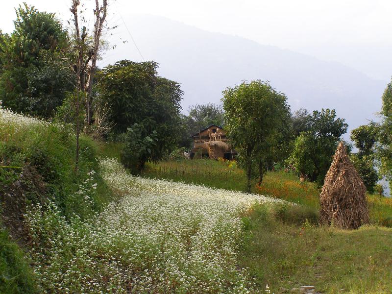Nepalese trekking scene
