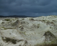 Sand dunes Mason\'s Bay