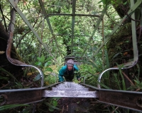 Denise on Waiaua Gorge ladder