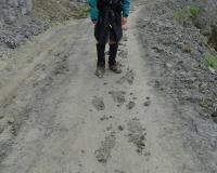 Mud on Moki Track
